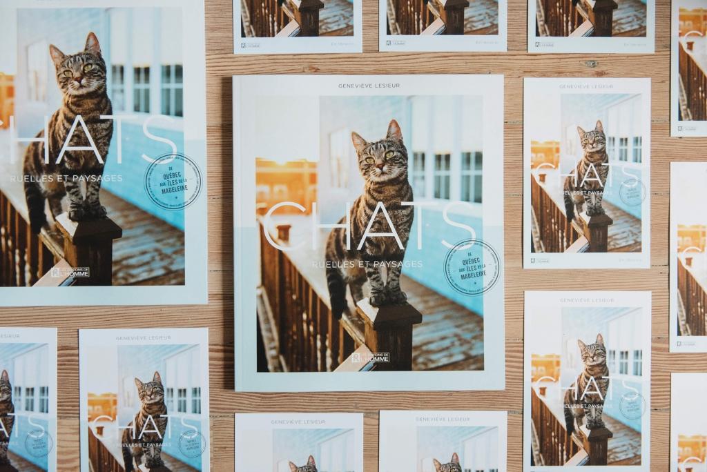 La photographe Geneviève LeSieur pose un regard tendre sur les chats qu'elle a croisés au cours de ses promenades dans le quartier de Limoilou, à Québec, et sur ceux que son voyage aux Îles-de-la-Madeleine a mis sur sa route.
